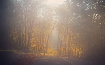 Bad at Running: A Quiet Paradise
