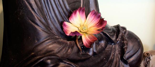 Yoga teacher training program in Norfolk, Virginia Beach & Hampton Roads!