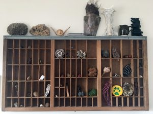 "One of my ""altars"" - a letterpress type drawer filled with natural found objects"